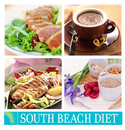 south beach meal delivery service